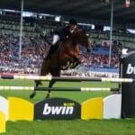 bwin hestesport