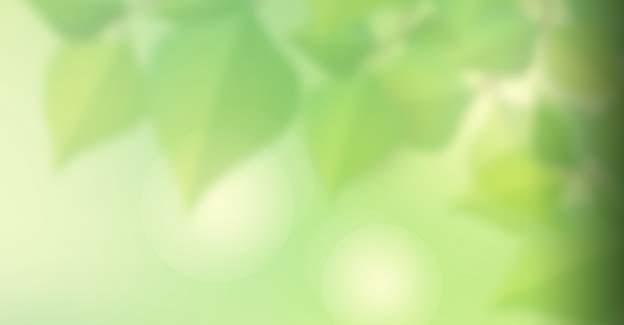 Kun i dag: Få et 75 kr. freebet hos Unibet